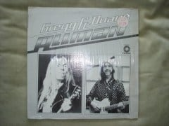 Gregg & Duane Album